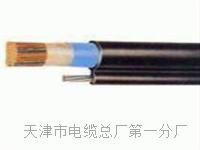 行政电话电缆HYA-50x2x0.5国内型号 SYV视频电缆线