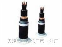行政电话电缆HYA-50x2x0.5价钱 SYV视频电缆线