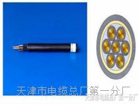 行政电话电缆HYA-50x2x0.5价格咨询 SYV视频电缆线