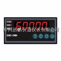 單通道儀表 迅鵬WPE6-DV WPE6