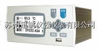 工業窯爐記錄儀 蘇州迅鵬WPR21R  WPR21R