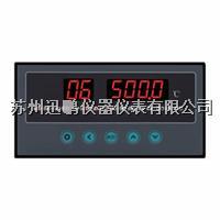 8路溫度巡檢儀 蘇州迅鵬WPL8 WPL8