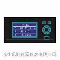 電流記錄儀,無紙溫度記錄儀,迅鵬WPR10 WPR10