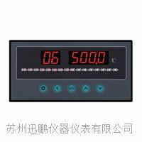 蘇州迅鵬WPL8八路溫度巡檢儀? WPL8