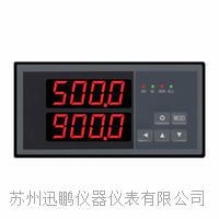 雙回路數顯儀(迅鵬)WPD2 WPD2