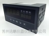 峰值顯示控制儀 WPB2