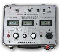 GM系列可調高壓數字兆歐表 GM系列