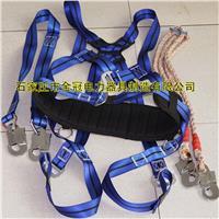 藍色全方位懸掛雙背帶電工安全帶 藍色全方位懸掛雙背帶電工安全帶