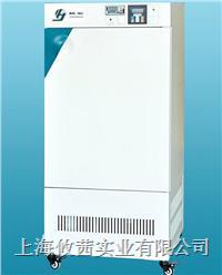 上海精宏 HWS-400恒溫恒濕箱