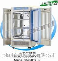 MGC-450BPY-2光照培養箱(程控/智能型)上海一恒