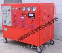 SF6气体回收装置 LYGS4000