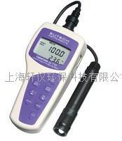 经济型便携式防水型DO溶解氧仪
