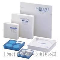 AP4004700玻璃纤维膜