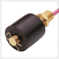 LS-1750/LS-01755PN:01755美國Gems單點浮球液位開關 LS-1750