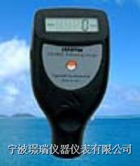 铁基/非铁基涂层测厚仪  CM8828