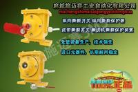 PDSL-K265M皮带防撕裂控制器