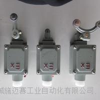 防爆限位开关BYW20-11 GXA51A1B