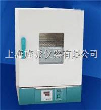 電熱恒溫干燥箱 202-00A
