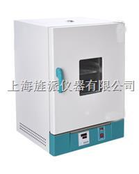 廣州電熱鼓風干燥箱101-2AB 101-2AB