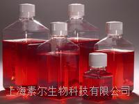 GIBCO DMEM 高糖 誠招代理 C12430500BT