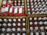 GIBCO DMEM(低糖)31600034現貨 31600034