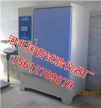 混凝土試塊標準養護箱 YH-40B型