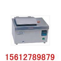 电热恒温油浴锅 DKU-20型