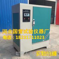 混凝土標養箱-SHBY-40B型混凝土標養箱 SHBY-60B型混凝土標養箱