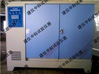 標準恒溫恒濕養護箱 YH-60B型
