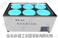 智能恒溫水浴鍋 WB-6A