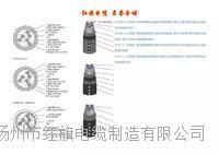 廣州船用電纜 CEFR