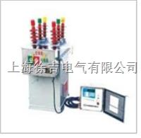 ZW8-12/M户外交流高压真空断路器