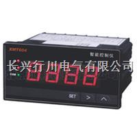 帶通訊無紙記錄儀 XMTHR848K