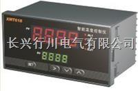 6路溫度記錄儀 XMTHR648
