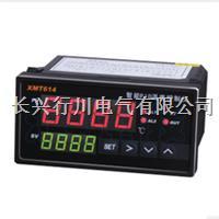 多段可編程溫濕度控制器 XMT9007-8P8