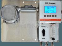 在线过程硫化氢分析仪