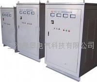 TESGCZ單相柱式電動調壓器 TESGCZ