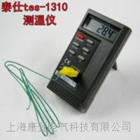 温度计 TES1310
