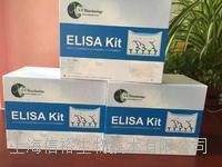 人白介素1α(IL-1α)試劑盒