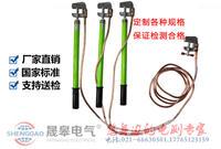 JDX-WS-10KV变电线路型接地线 JDX-WS-10KV