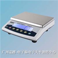 電子天平|美國雙杰電子稱E15KY-0.5 E15KY-0.5