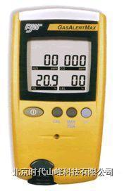 GAMAX3-4气体检测仪 BW GAMAX3-4