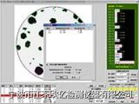 球墨铸铁,铁素体和珠光体数量分级模块 球墨铸铁__铁素体和珠光体数量分级(模块【23】含石墨、渗碳体百分比)