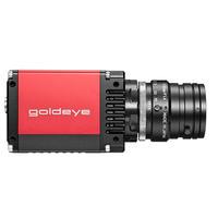 高速短波红外相机 GOLDEYE G-033 TEC1