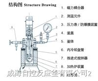 WDF型磁力反应釜