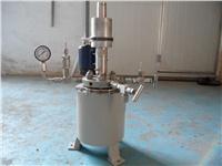 高温高压反应釜 WHF