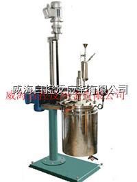 5L高温高压反应釜