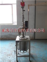 高温高压反应釜