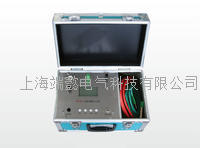SR10000绝缘电阻测试仪 SR10000