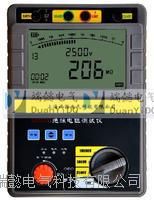 SDY2303数字绝缘电阻测试仪 SDY2303